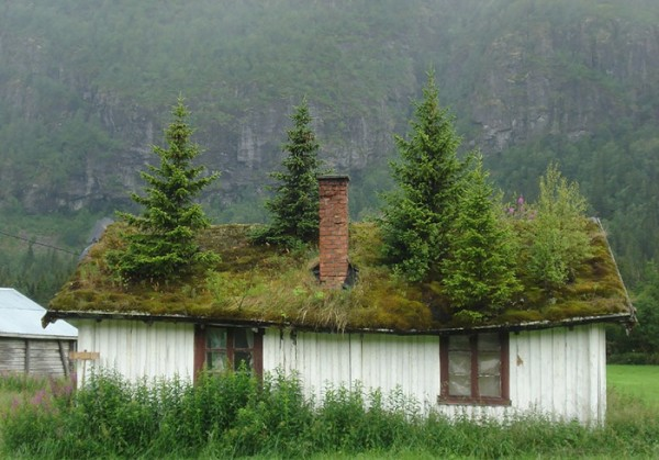 fairy-tale-viking-architecture-norway-4_.jpg